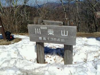 NEC_0615.JPG